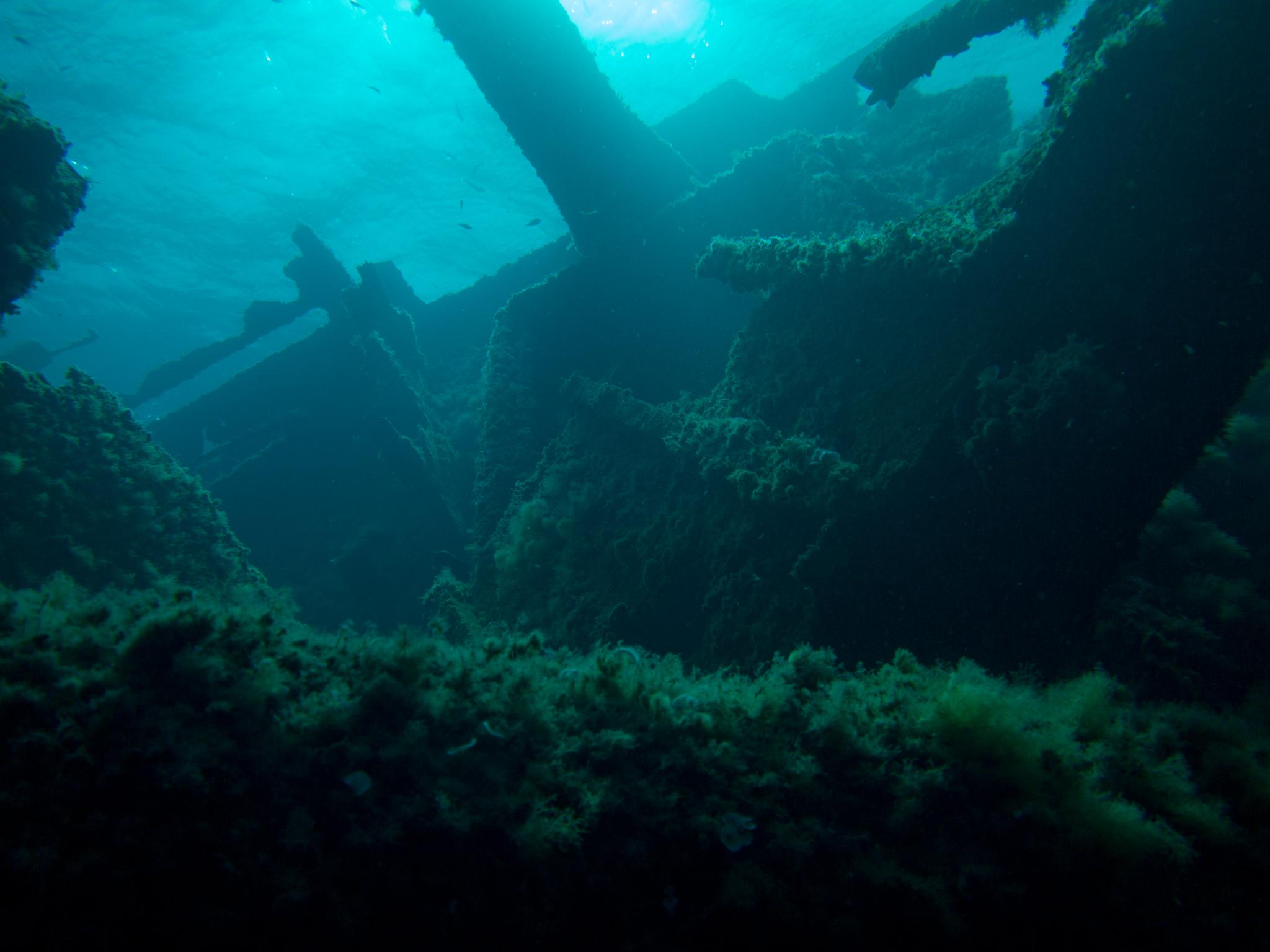 Elba-4344